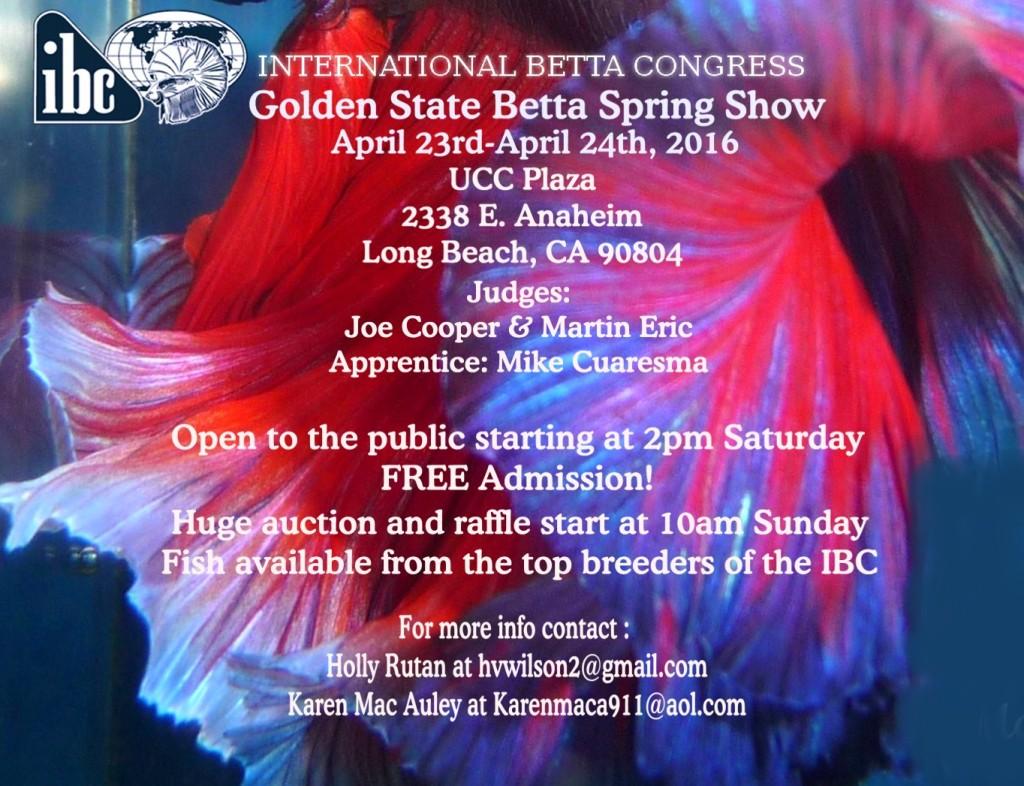 GSB 2016 spring show